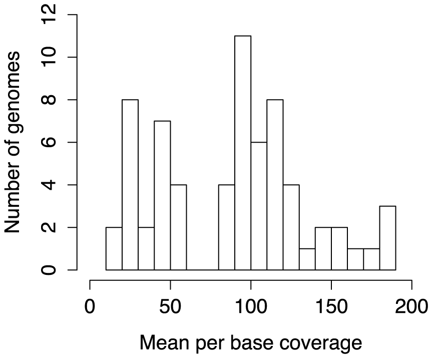 Sequencing depth of newly sequenced haloarchaeal genomes.