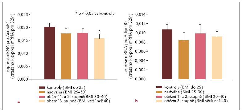 Exprese mRNA AdipoR1 (a) a AdipoR2 (b) v subkutánním tukové tkáni.