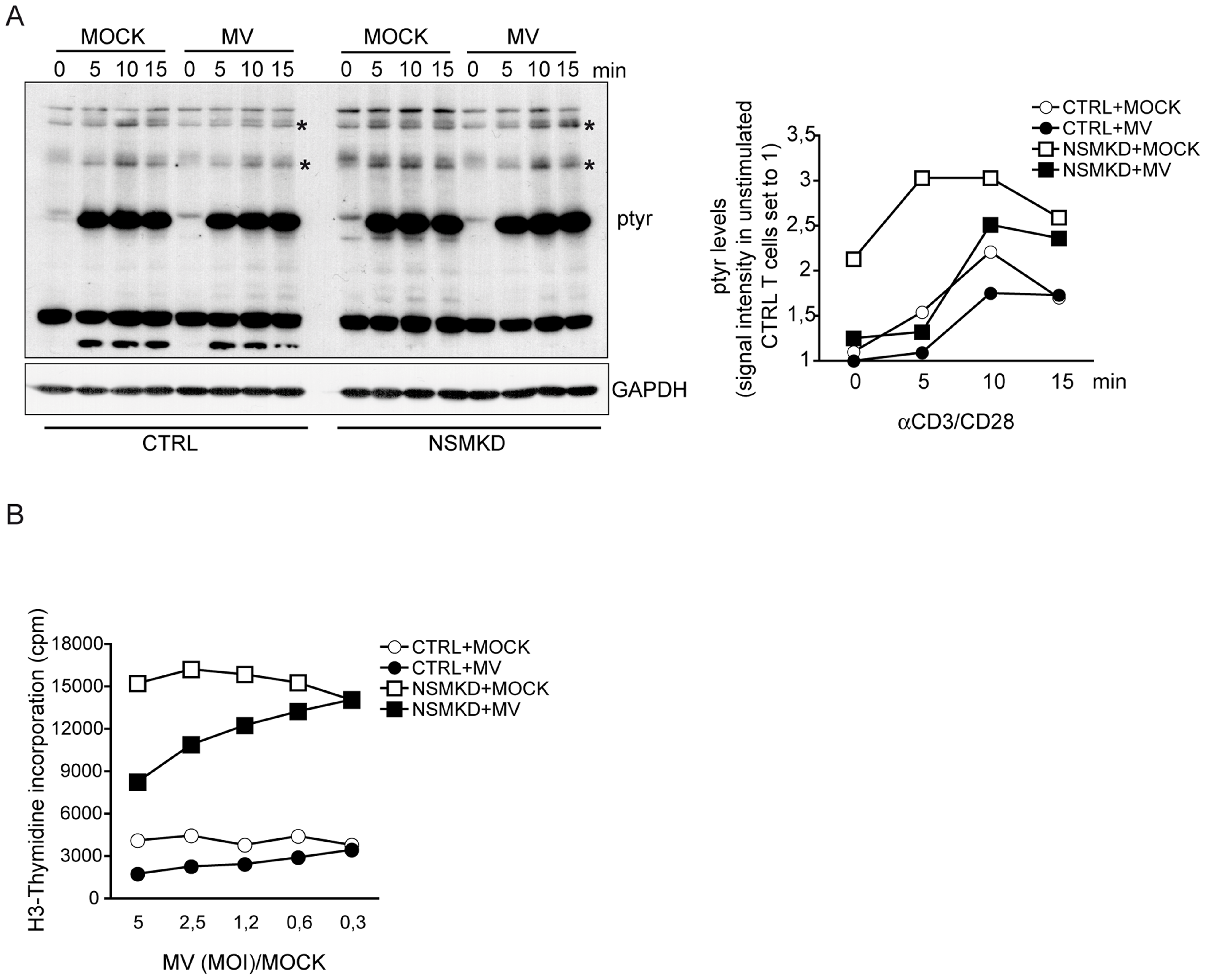 NSM activation contributes to MV interference with T cell early activation and expansion.