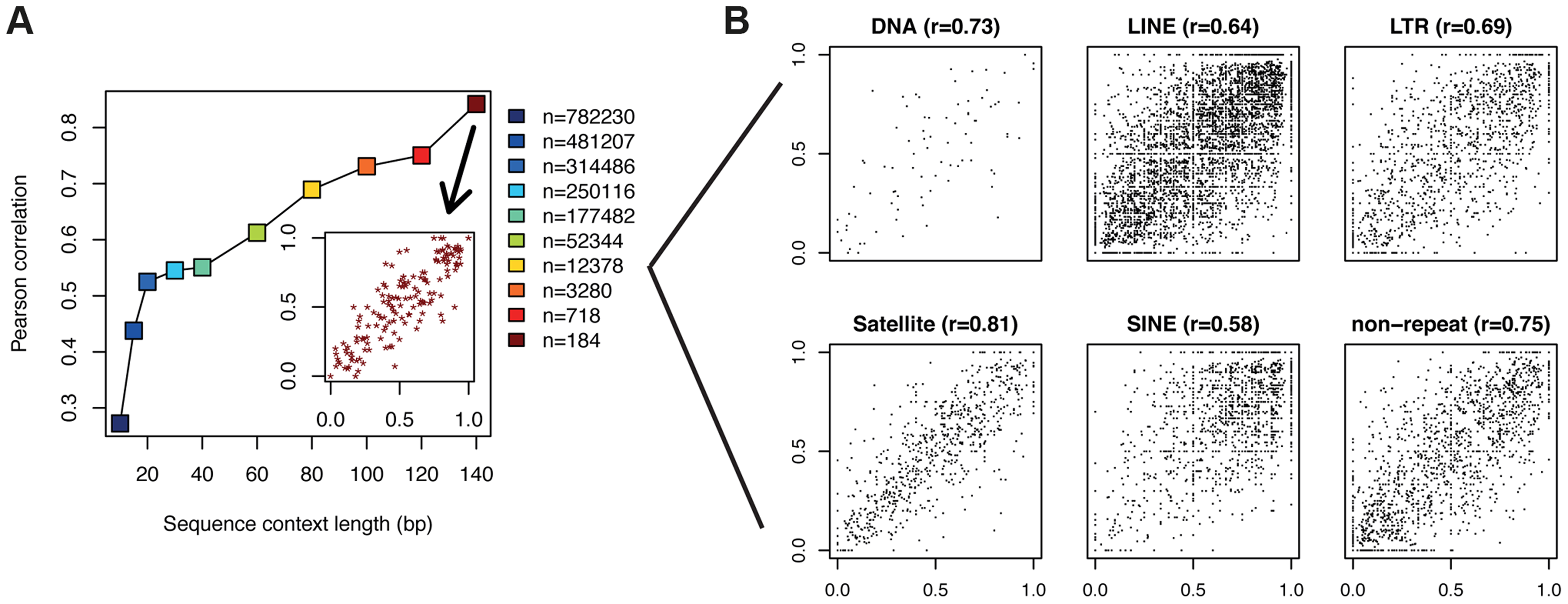 CpGs with identical flanking sequence display similar methylation.