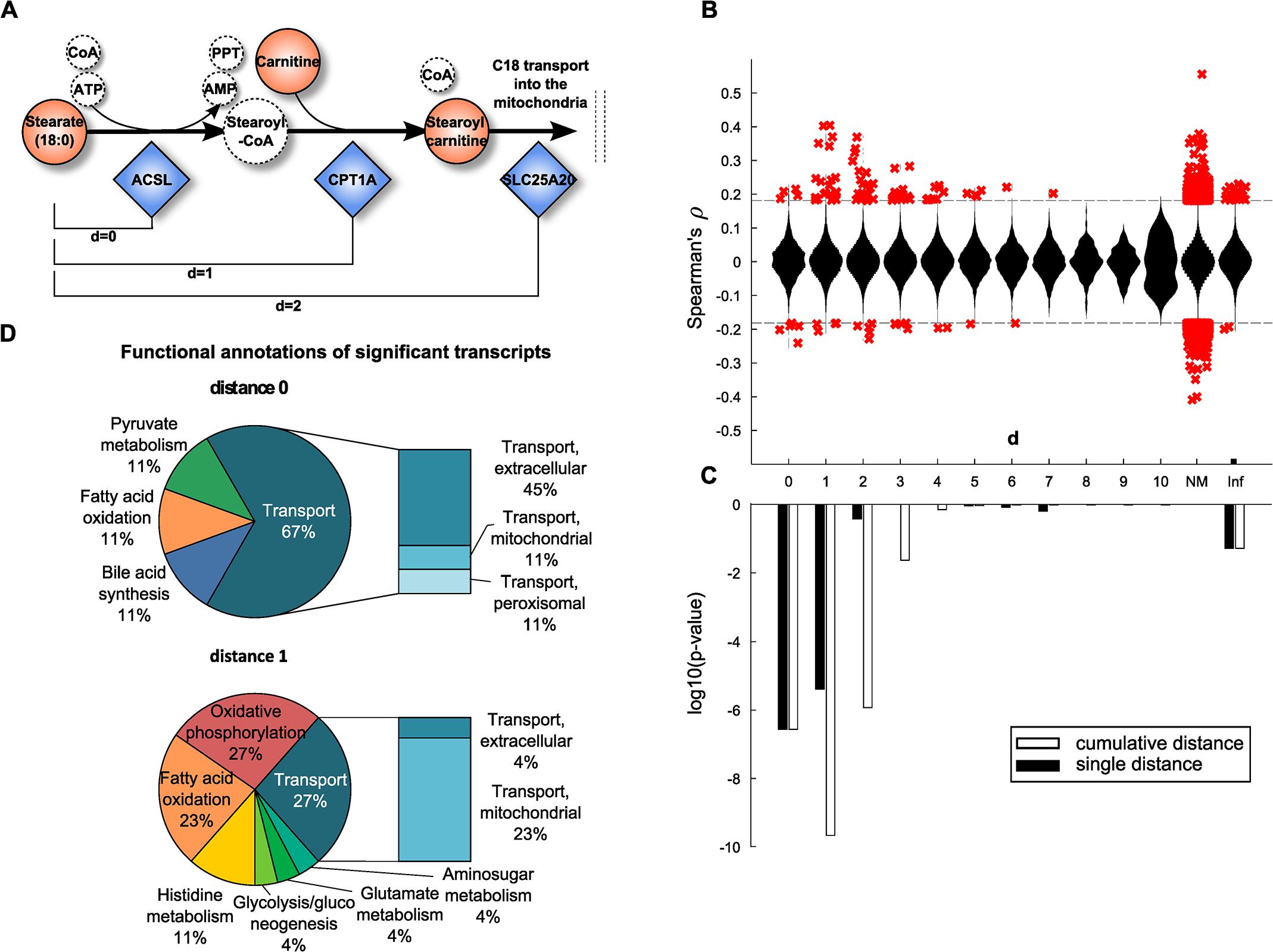 Model-based evaluation of metabolite-mRNA correlations.