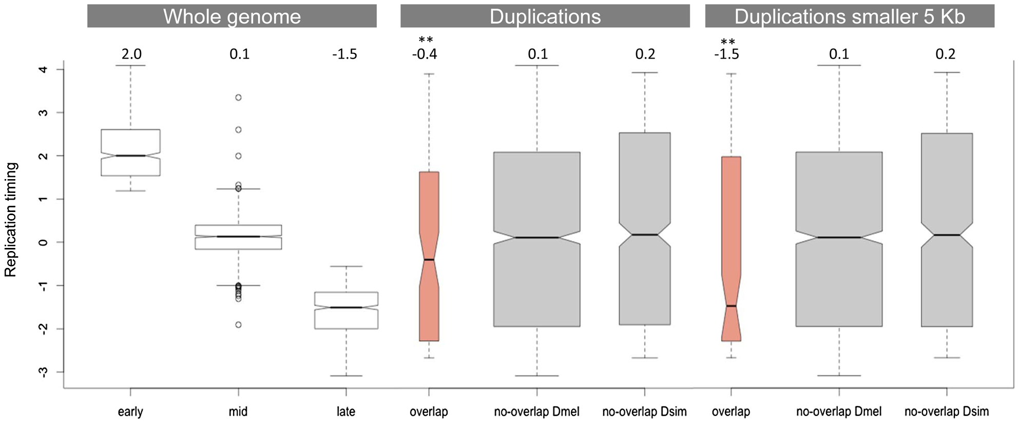 Replication timing of duplications overlapping between <i>D. simulans</i> and <i>D. melanogaster</i>.