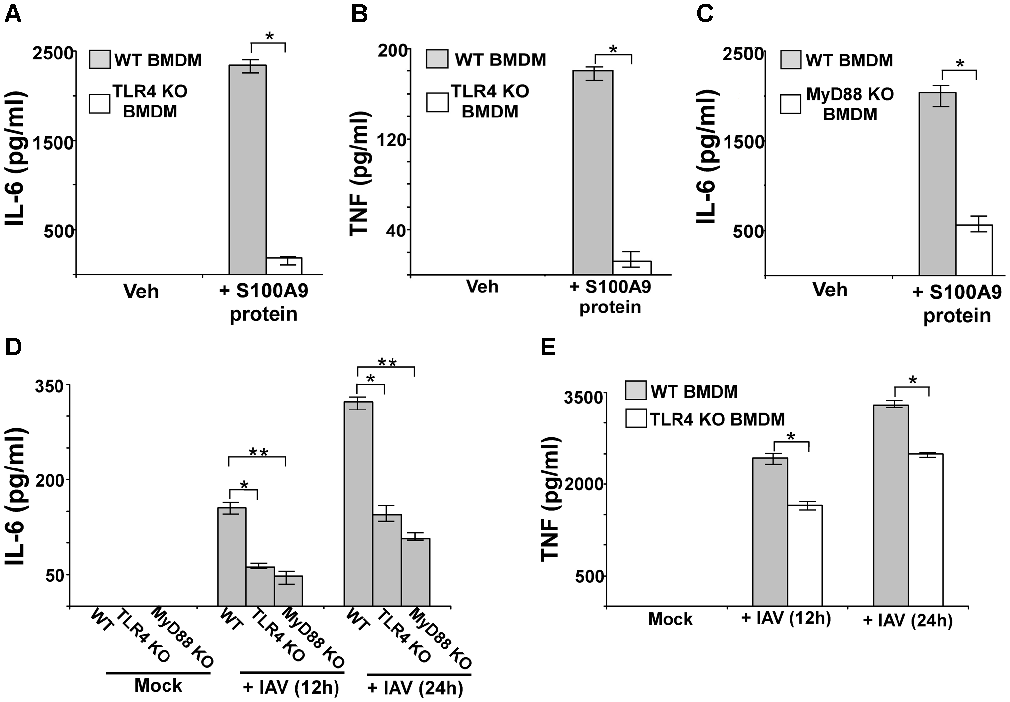 S100A9 activates TLR4/MyD88 pathway and activation of TLR4/MyD88 pathway is essential for IAV-induced pro-inflammatory response.