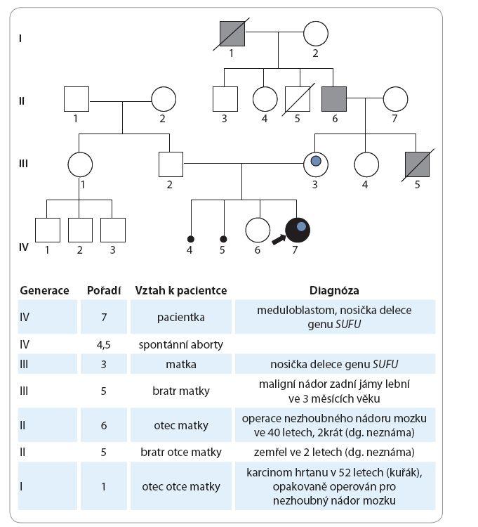 Genealogické schéma.