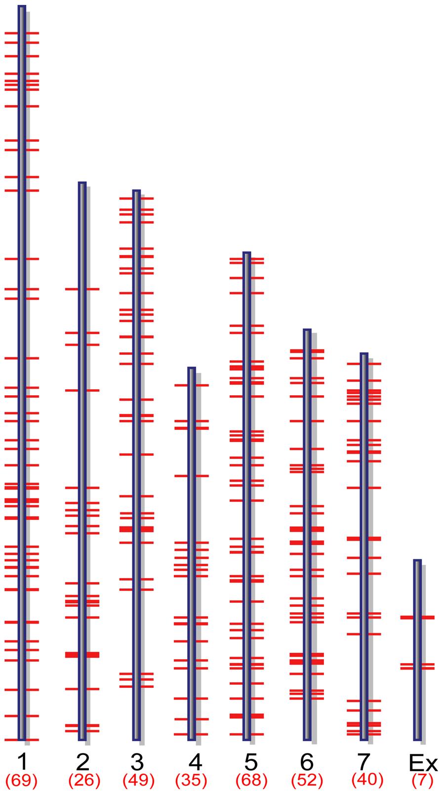 Genome-wide distribution of putative MoCRZ1 targets.