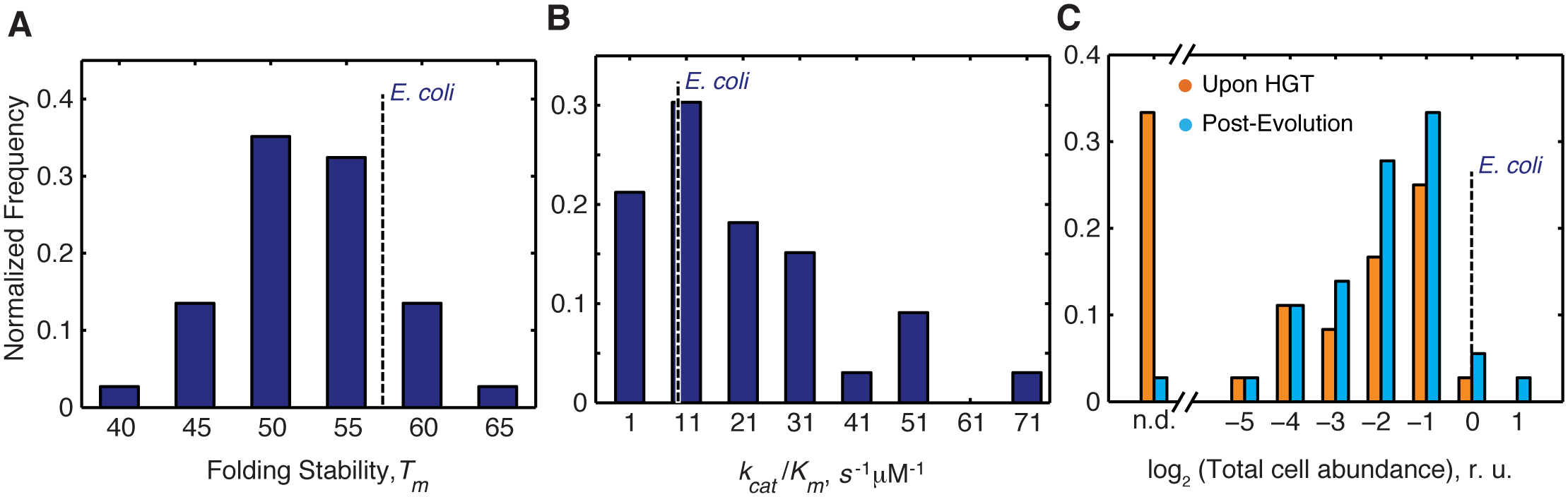Distribution of molecular and cellular properties of orthologous DHFRs.