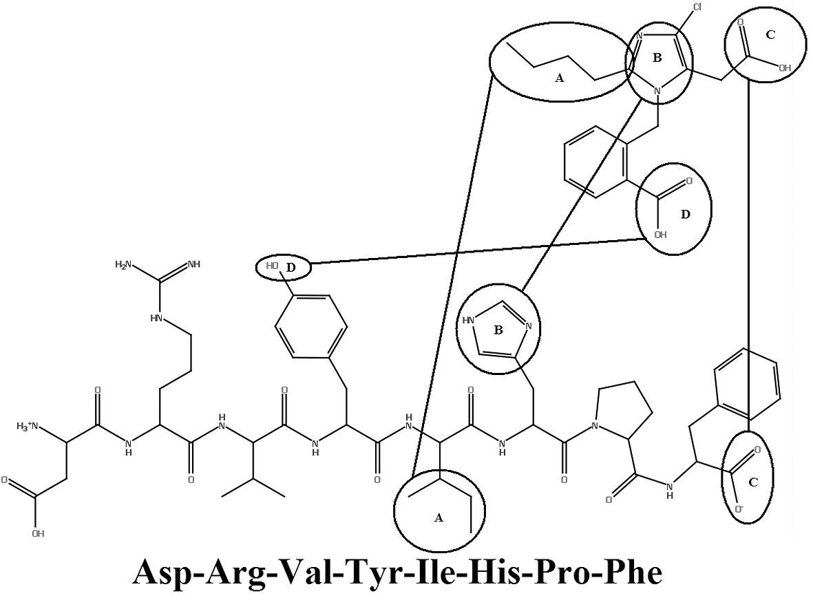 Prekrytie medzi ANG-II a EXP 6155<sup>19)</sup>