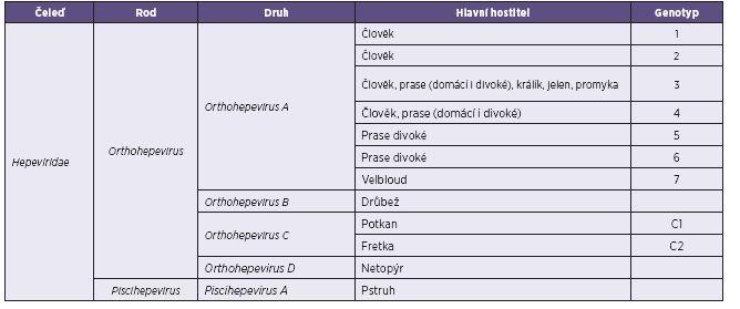 Navrhovaná klasifikace čeledi Hepeviridae [24] Table 1. Proposed classification of the family Hepeviridae [24]