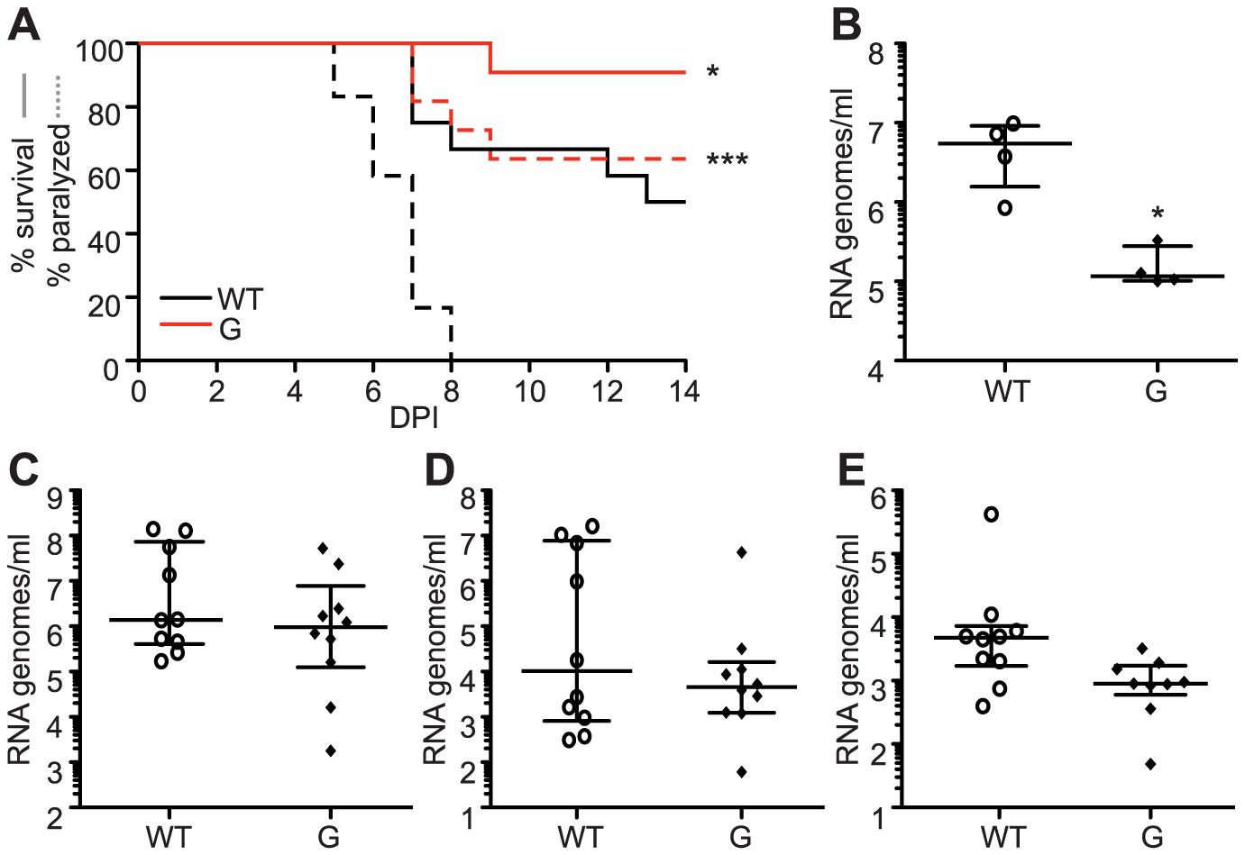 SINV mutator 482G is attenuated in mice but reverts in mosquitoes.