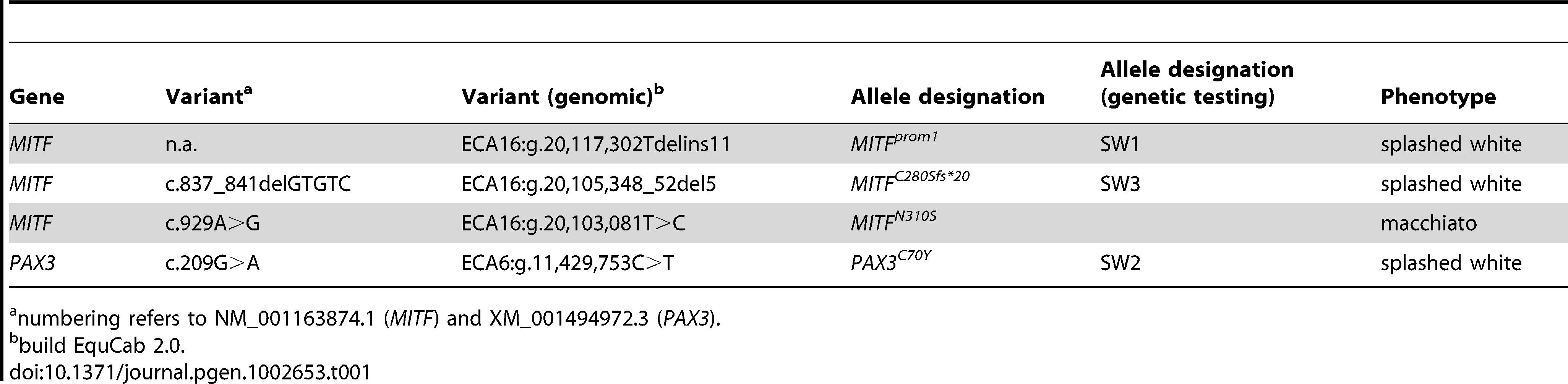 Causative mutations for white spotting phenotypes.
