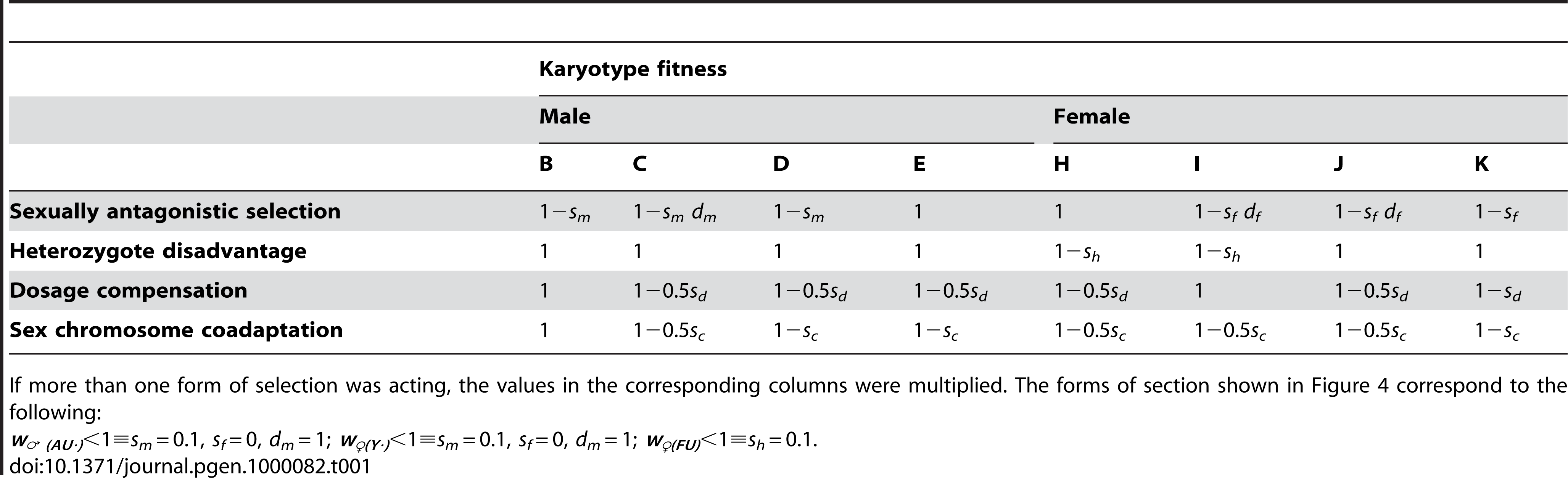 The finesses of the karyotypes under different forms of selection.