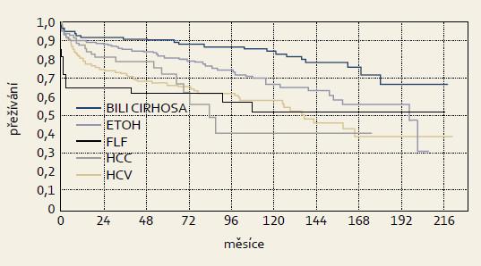 Přežívání štěpů podle hlavních indikačních skupin v programu transplantace jater IKEM, 1995–13. 8. 2013, n = 1 000, metoda Kaplan-Meier. Graph 4. Graft survival in main diagnostic groups in liver transplant program in IKEM, 1995–Aug 13, 2013, n = 1 000, Kaplan-Meier method.