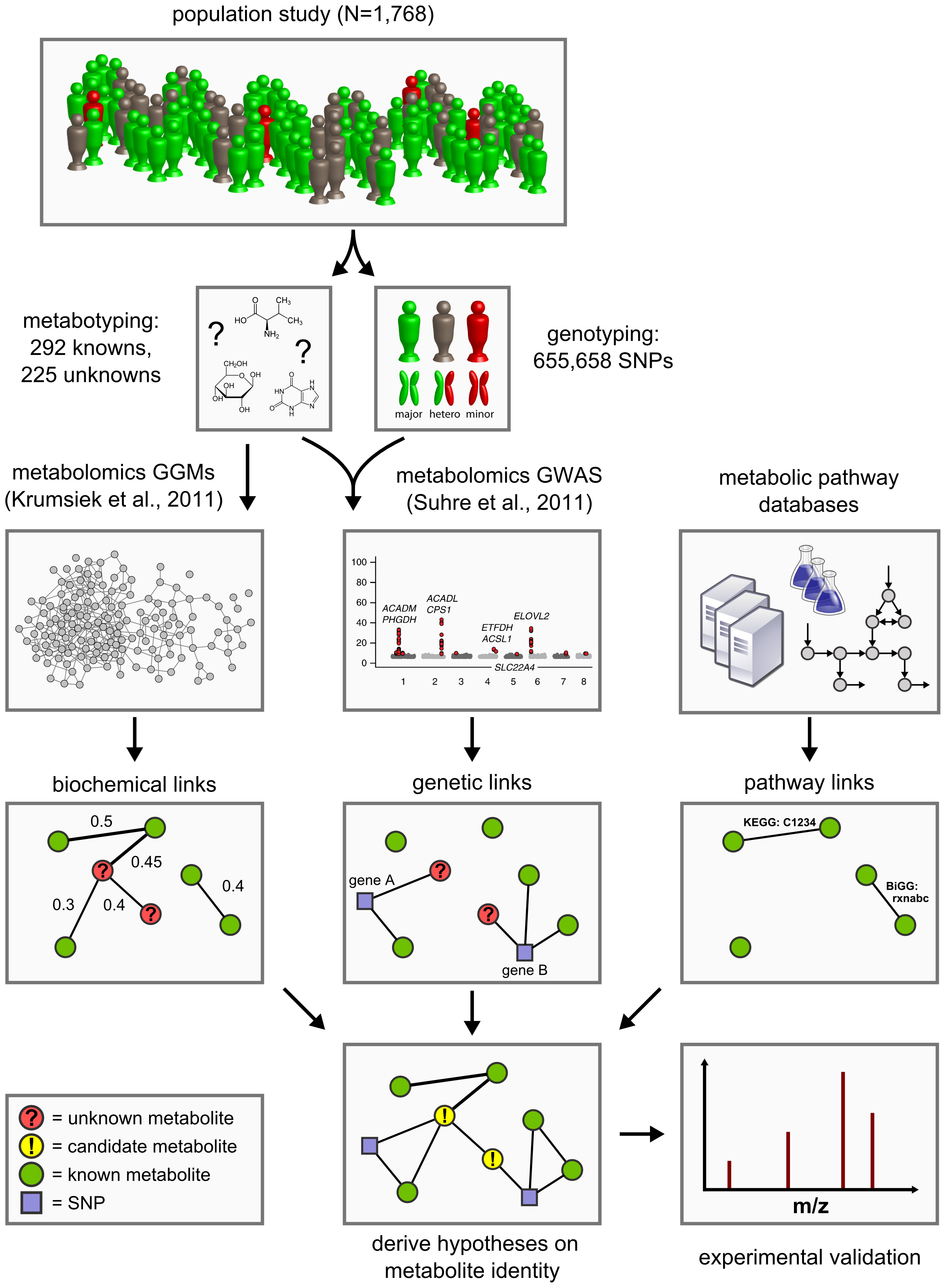 Data integration workflow for the systematic classification of unknown metabolites.