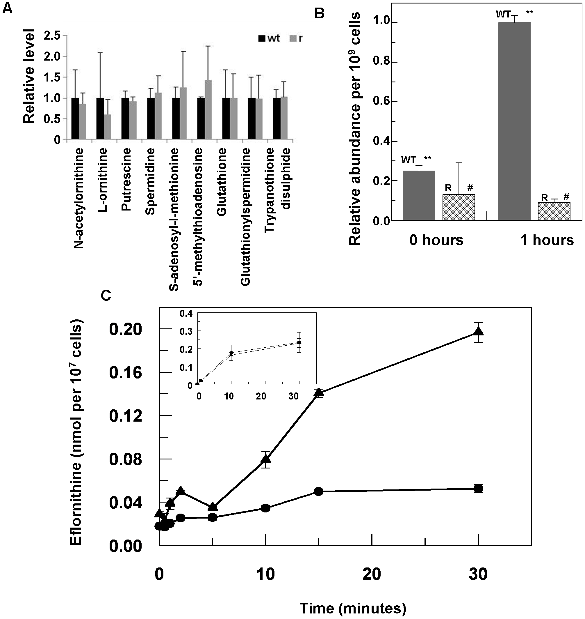 Metabolomic analysis of eflornithine resistance and uptake.
