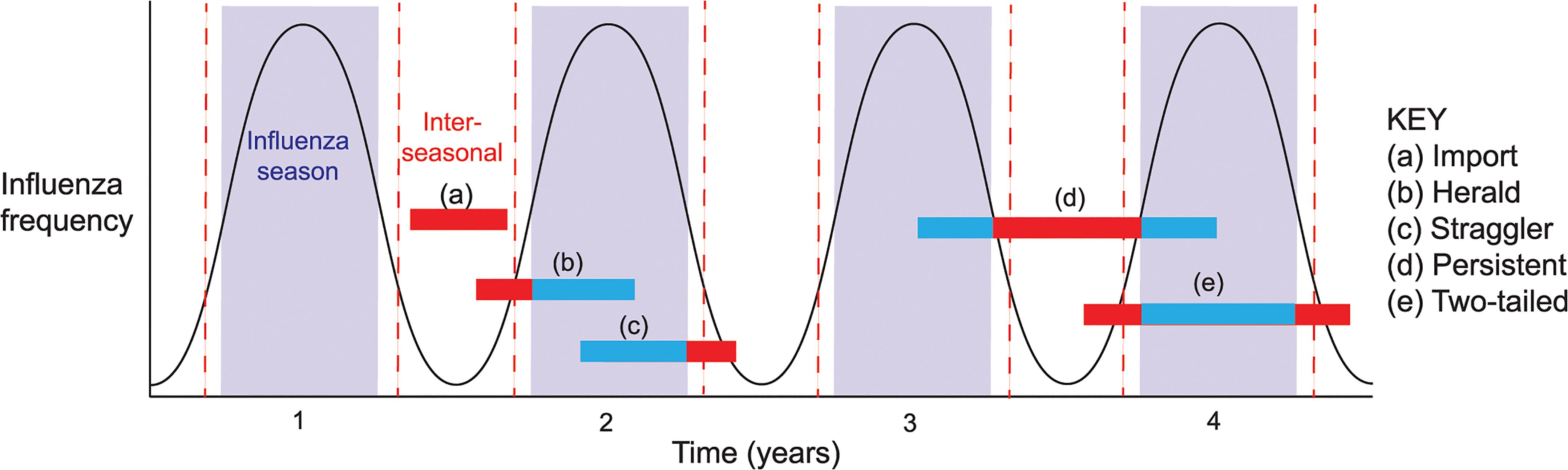 Patterns (event types) of inter-seasonal influenza transmission.