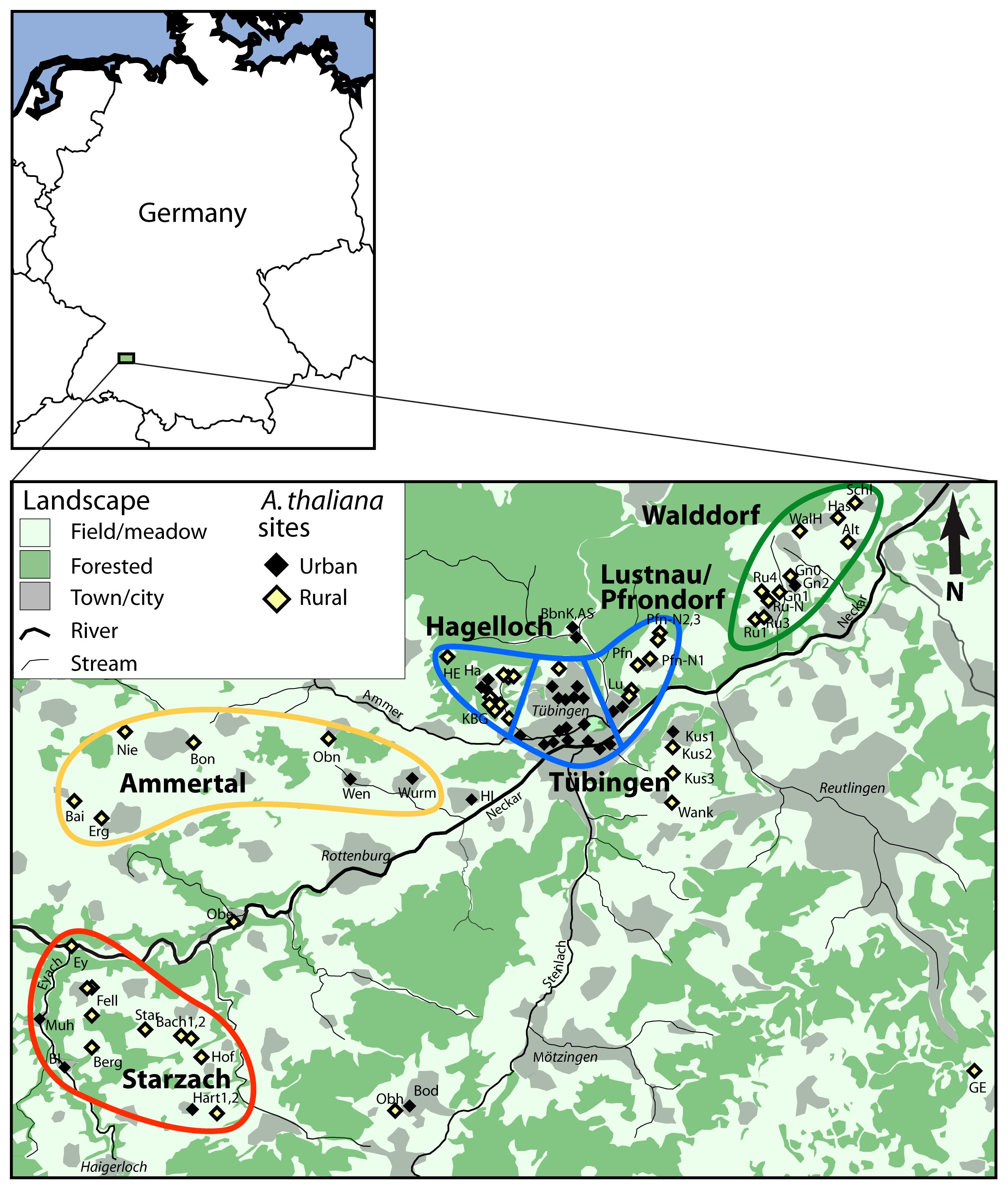 Map of collection sites in Tübingen area.