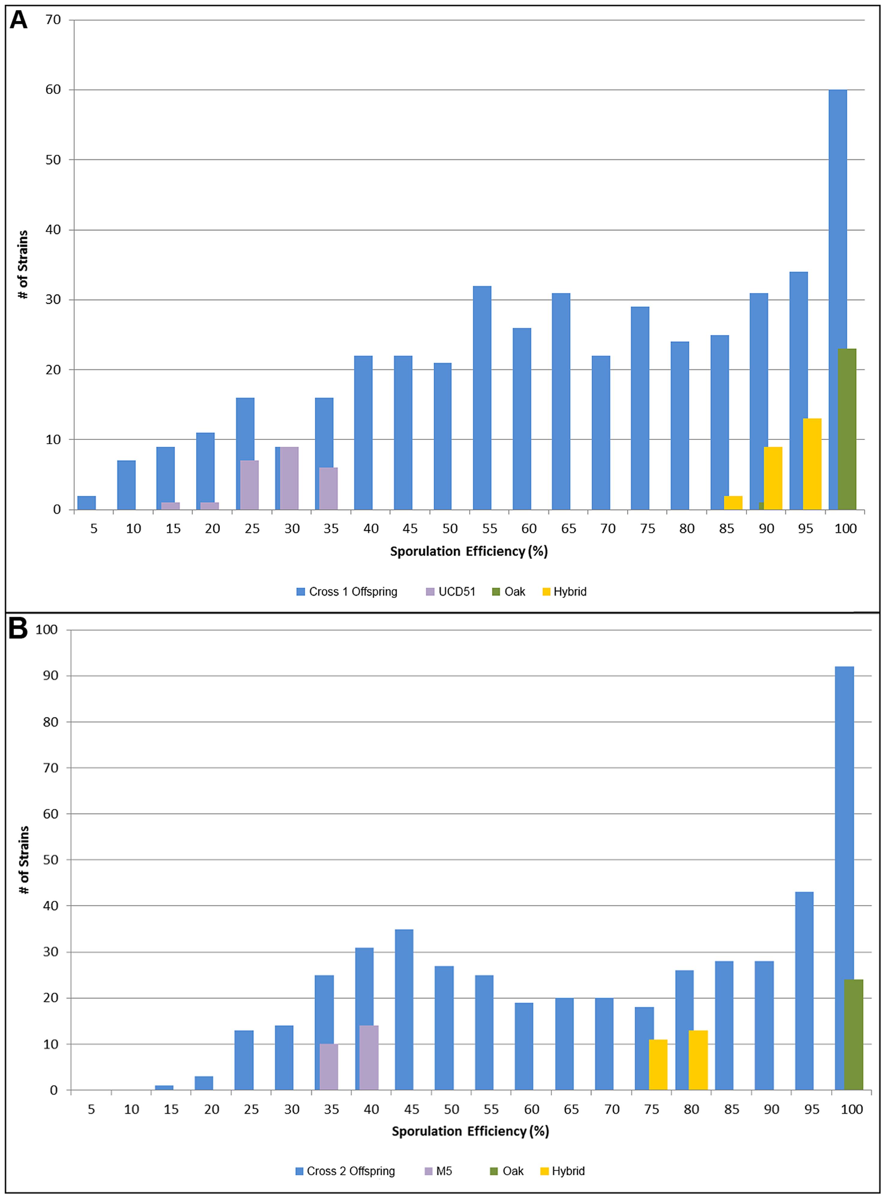 Histograms of sporulation efficiencies for progeny.