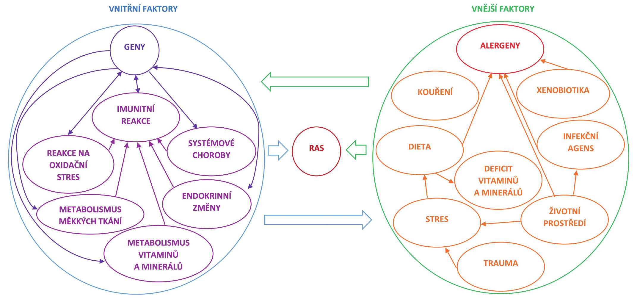 Interakce vnitřních a vnějšních faktorů v etiopatogenezi recidivující aftózní stomatitidy (RAS)