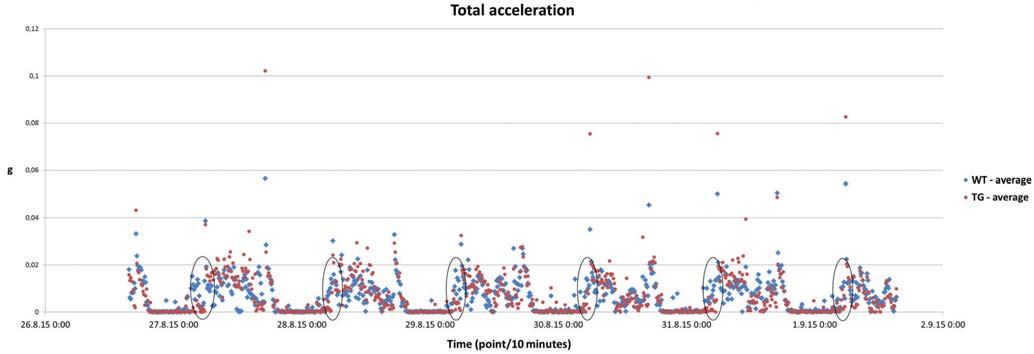 Fig. 2. Total acceleration (gravity acceleration – m/s<sup>2</sup>) representing physical activity of TgHD and WT animals over six following days.