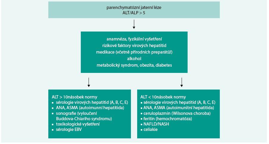 Schéma 2. Přístup k pacientovi s parenchymatózní jaterní lézí.