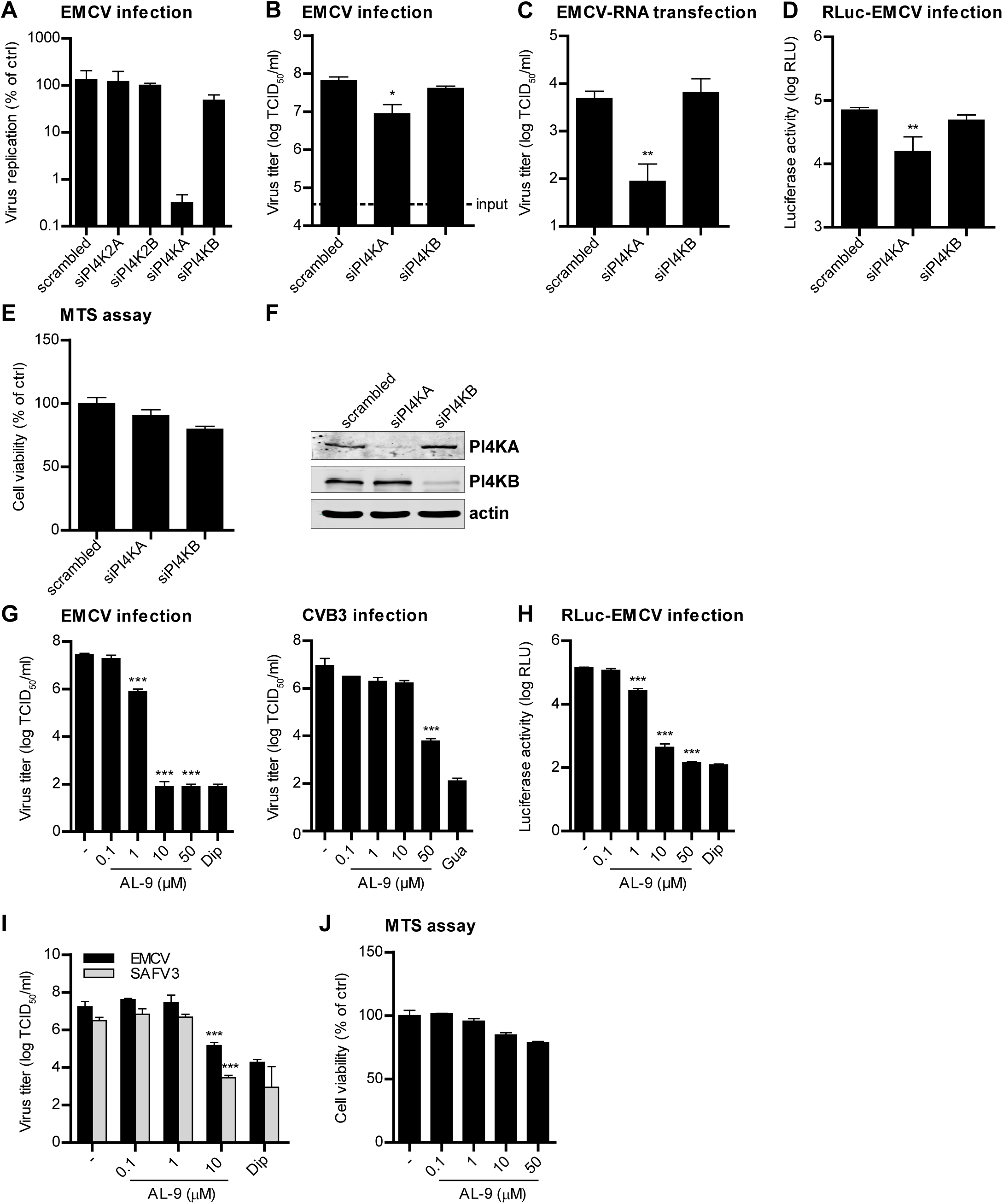 PI4KA is essential for cardiovirus replication.
