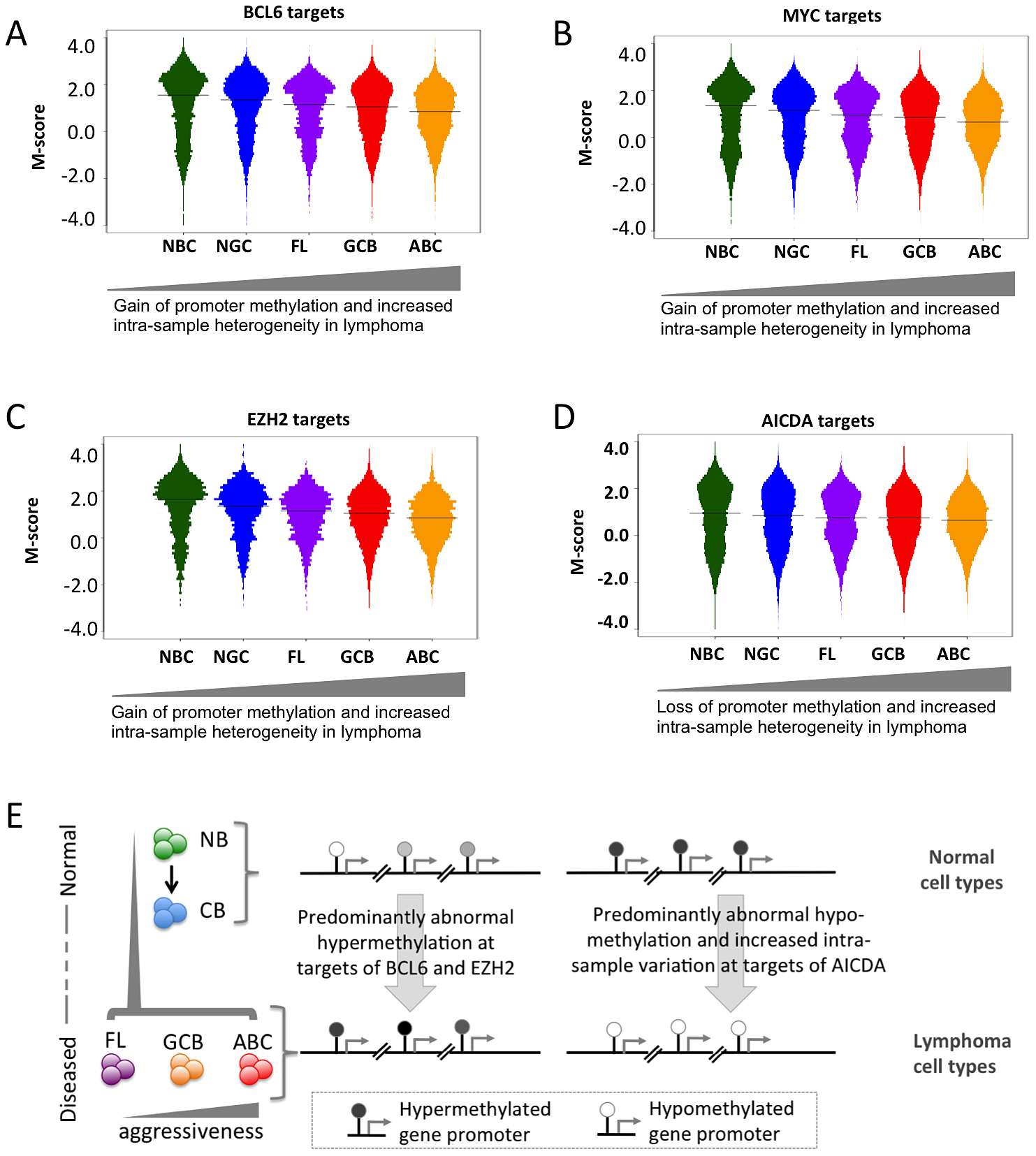 Genomic localization of transcriptional regulators and AICDA associates with sites of aberrant DNA methylation.