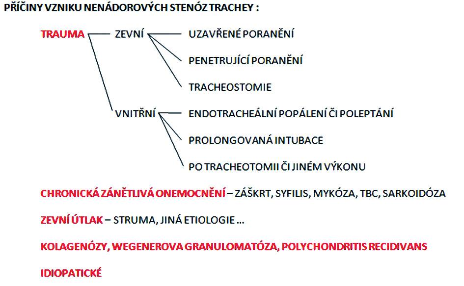 Rozdělení nenádorových příčin rozvoje stenóz trachey