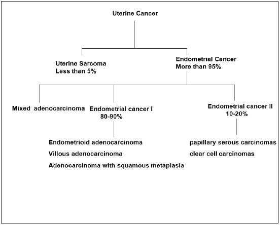 Figure 1. Types of uterine cancer