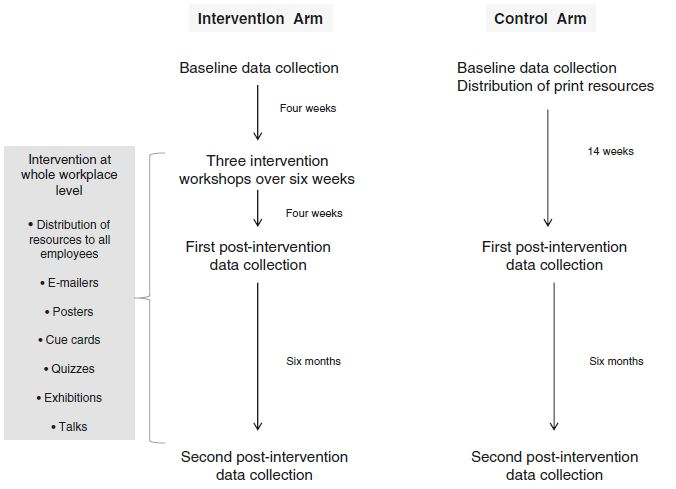 Data collection and intervention timeline