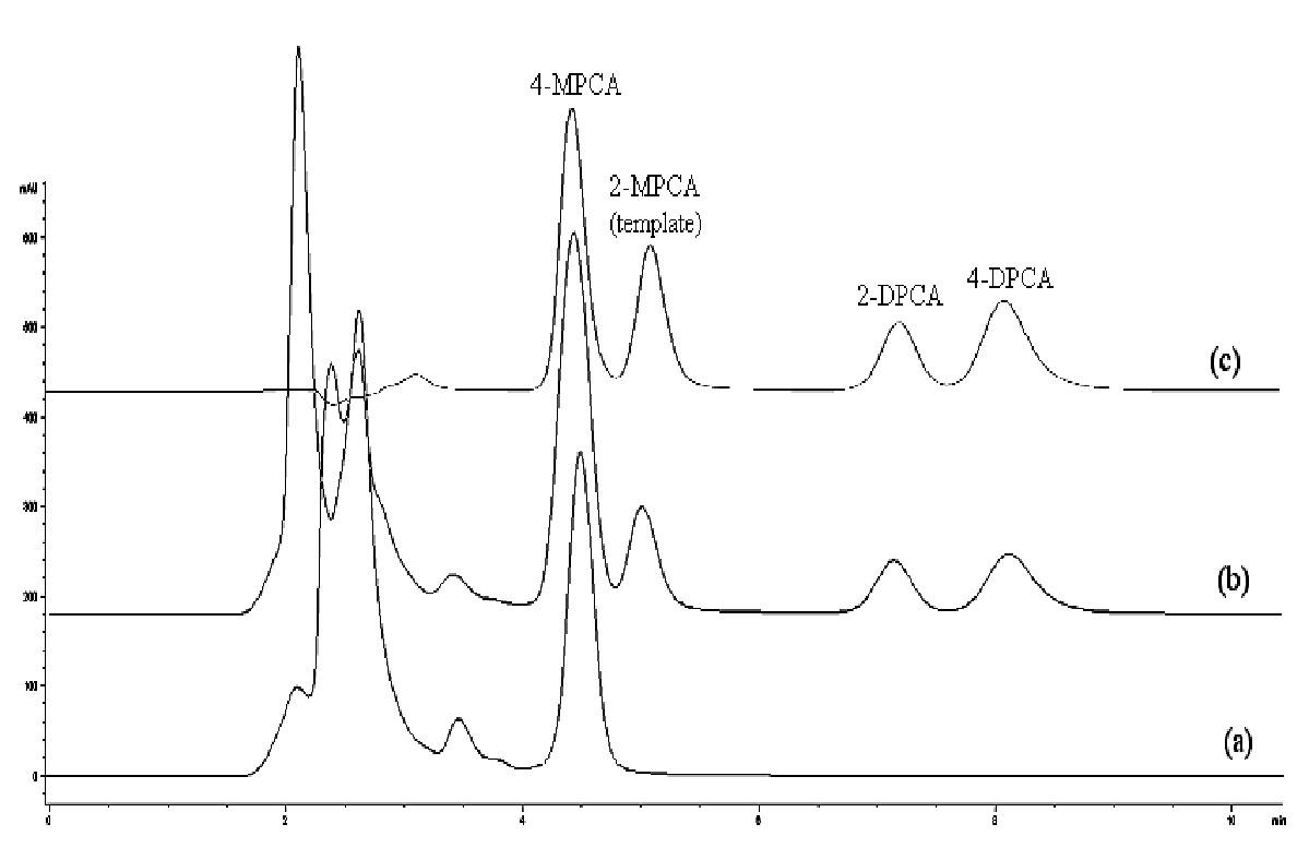 Chromatografické záznamy vzorky ľudskej plazmy bez pridania študovaných látok po SPE na sorbente typu C18 (a), vzorky ľudskej plazmy po pridaní študovaných látok (1 μg/ml) po SPE na MIP2 (b), zmes štandardov (metanolický roztok, 10 μg/ml každého analytu) (c) Kolóna: Separon SGX C18. Mobilná fáza: metanol/acetonitril/ kyselina octová/dietylamín (80/20/0.1/0.1, v/v/v/v), izokratická elúcia. Prietok 0,5 ml/min. Detekcia DAD, 240 nm. Dávkovaný objem 50 μl.