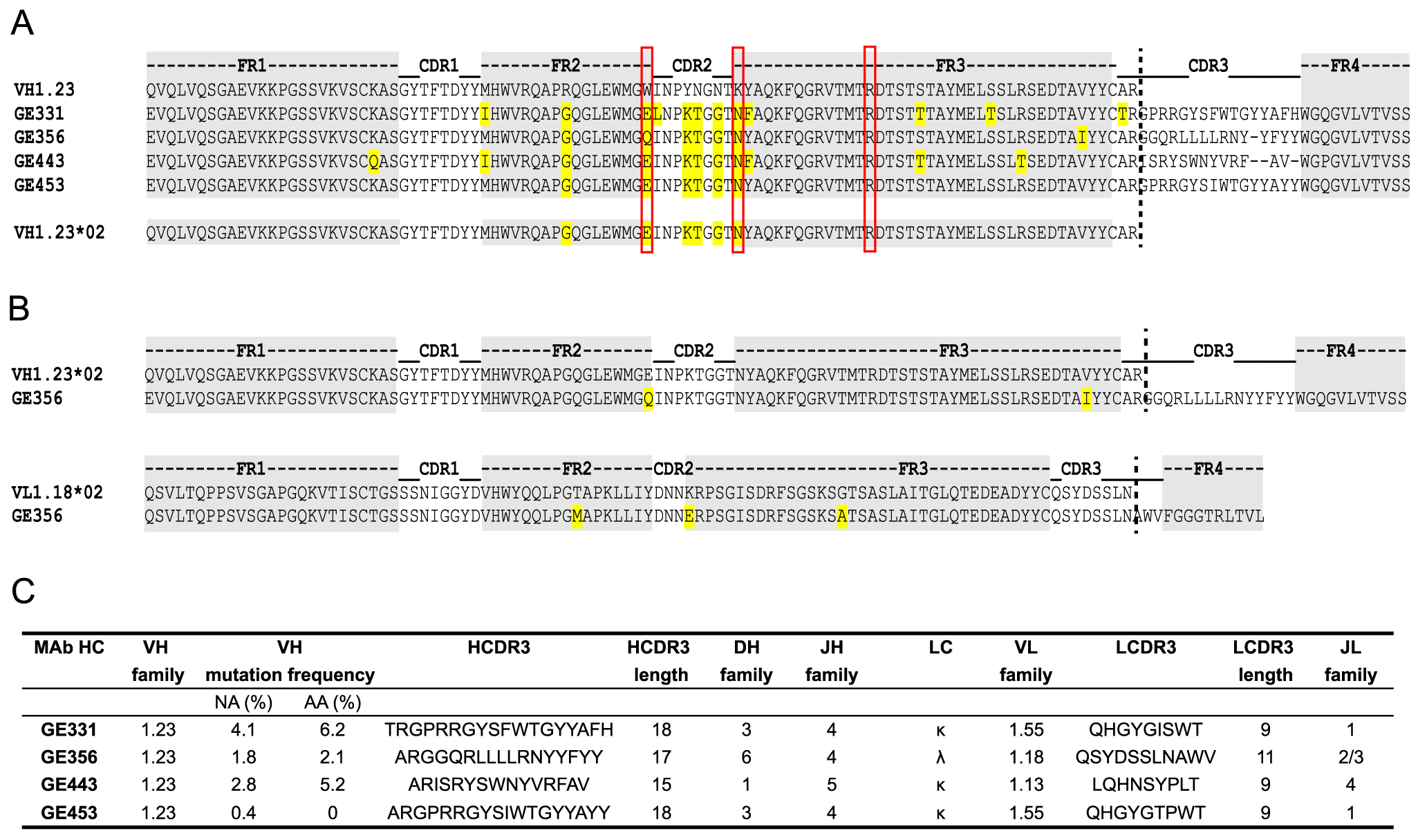 Genetic analysis of the isolated VH1.23-using CD4bs-specific MAbs.