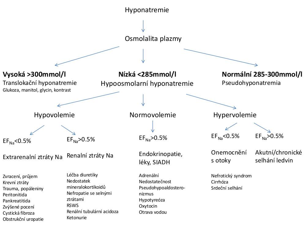 Diferenciální diagnostika hyponatremie u dětí