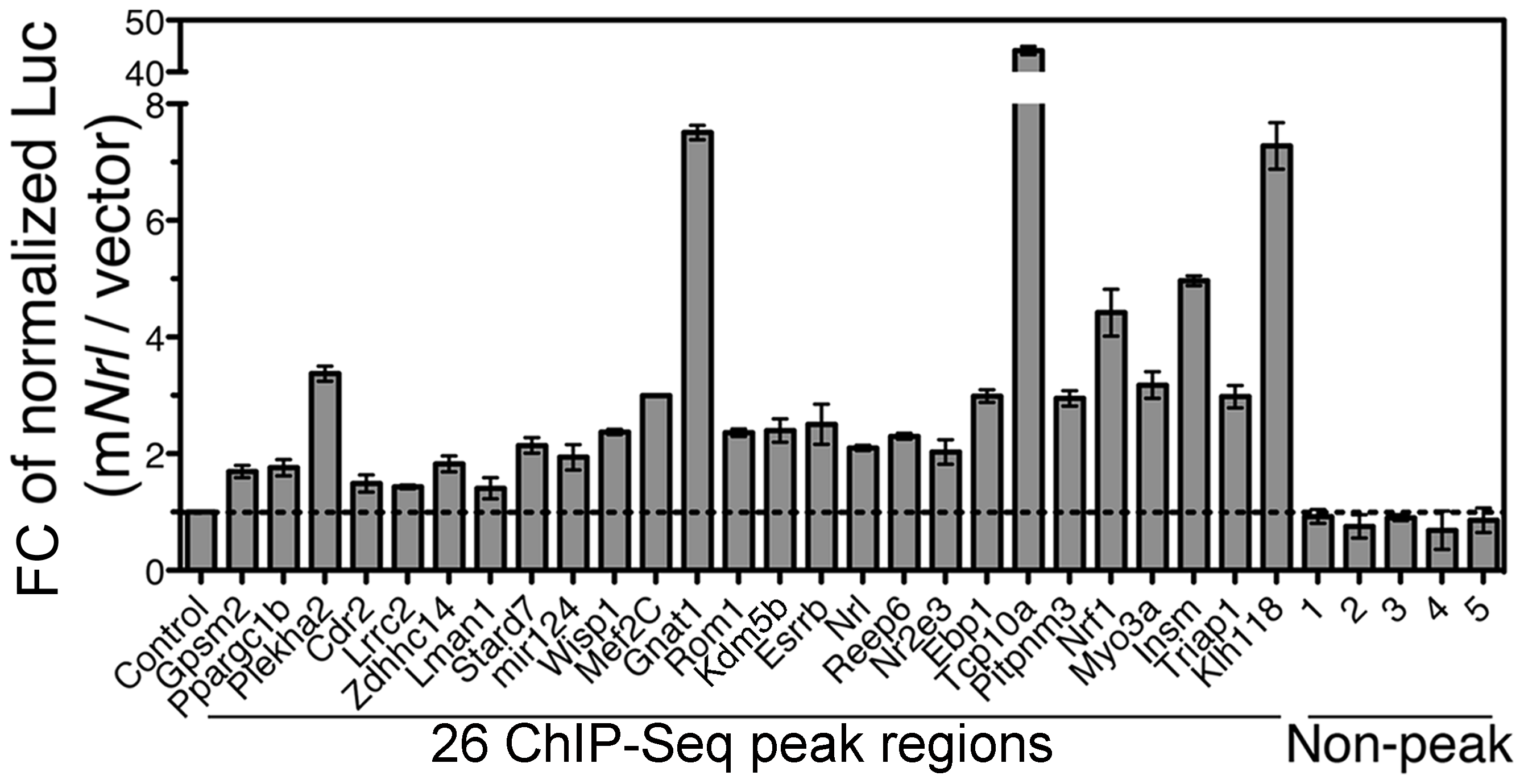 Enhancer function of NRL ChIP–Seq regions in transfected HEK293T cells.