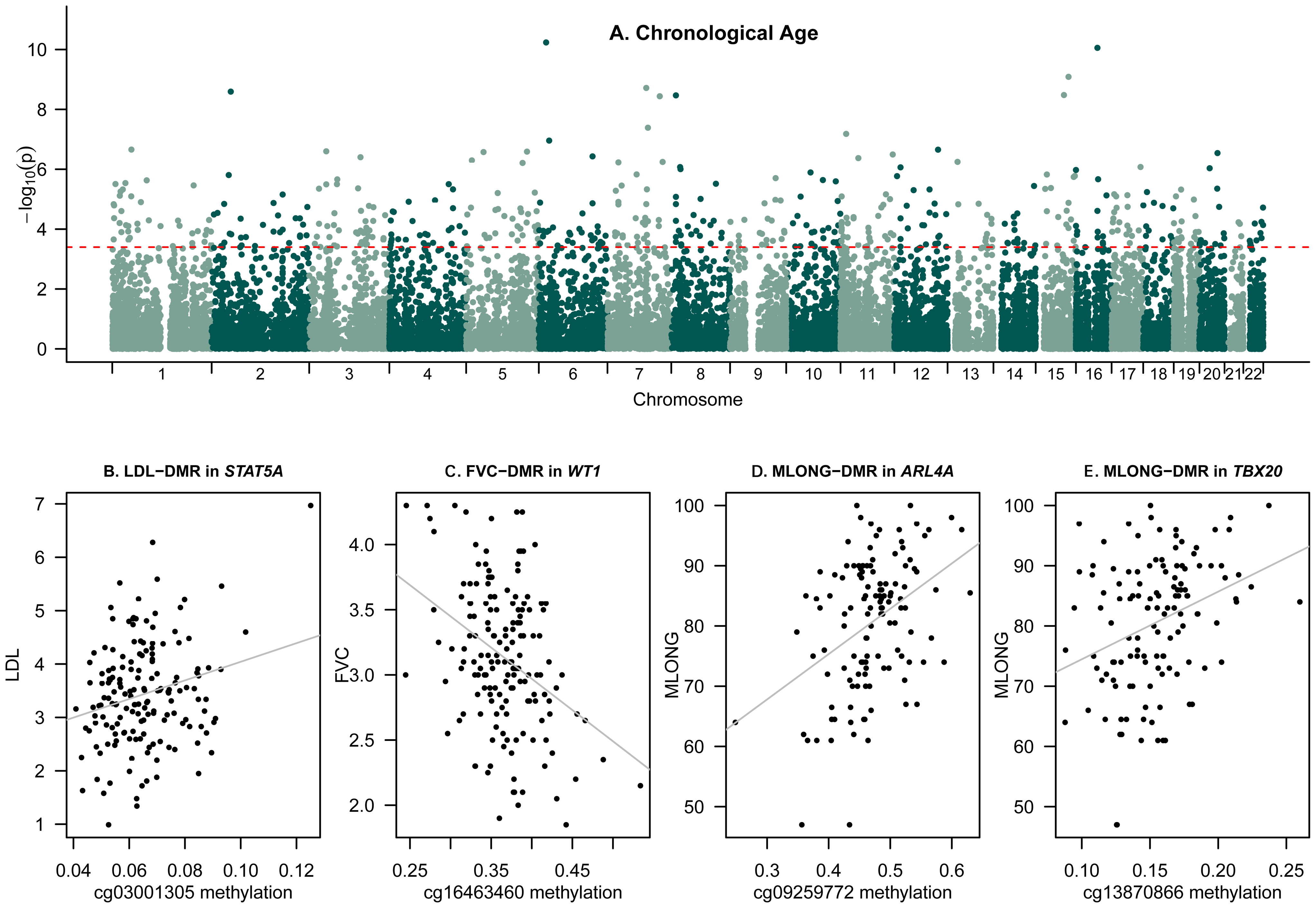 Epigenome-wide association scans of age and age-related phenotypes.
