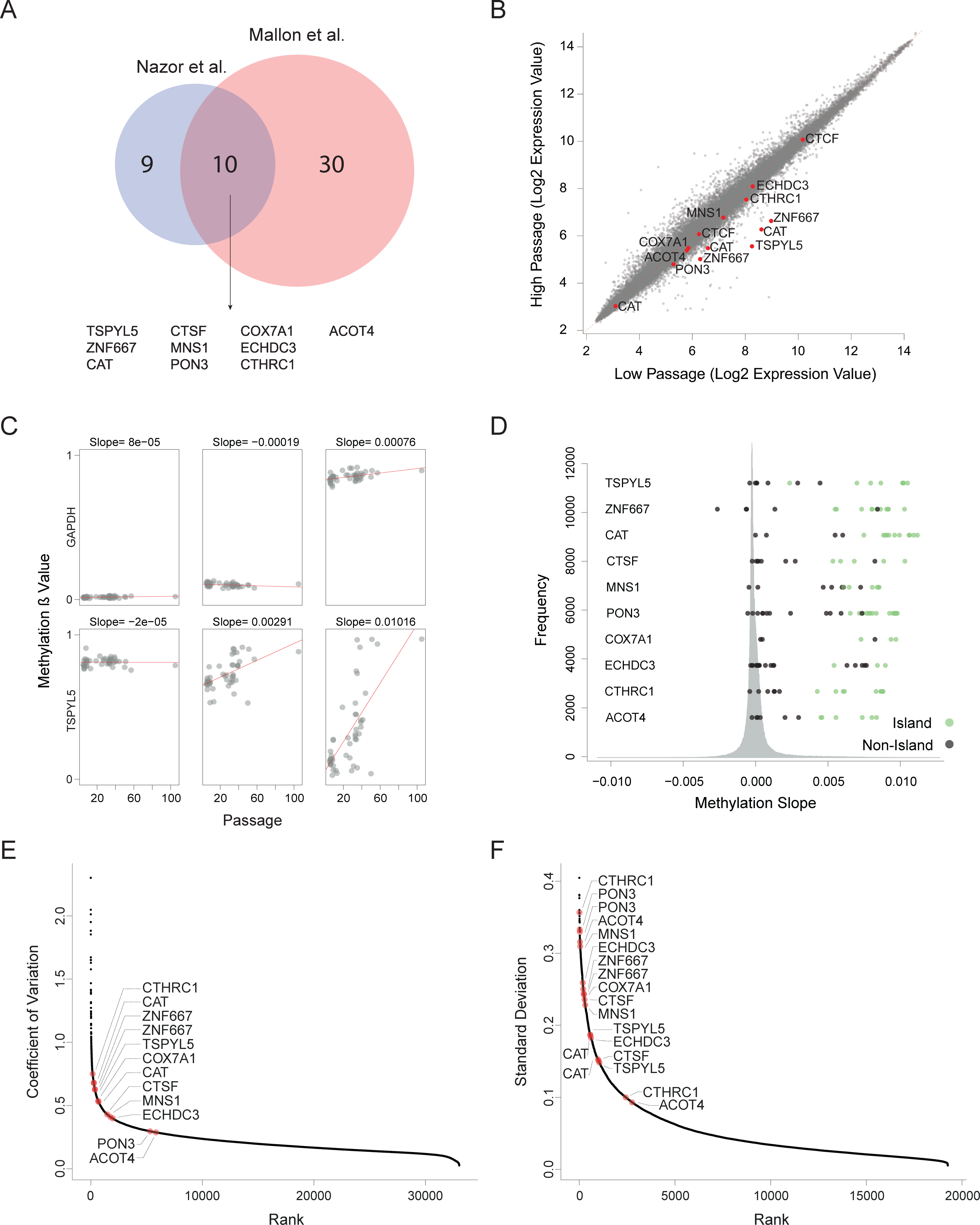Recurrent hypermethylation during culturing occurs at regulatory CpG Islands.