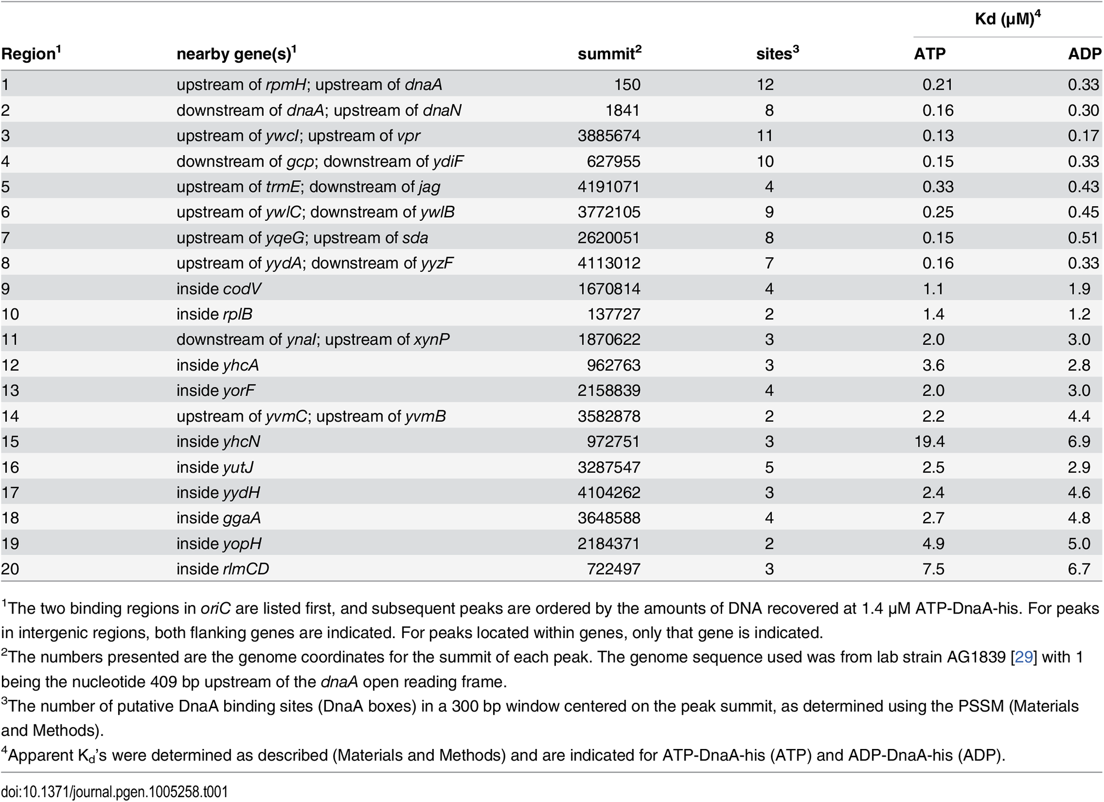 Top 20 DnaA binding regions <i>in vitro</i>.