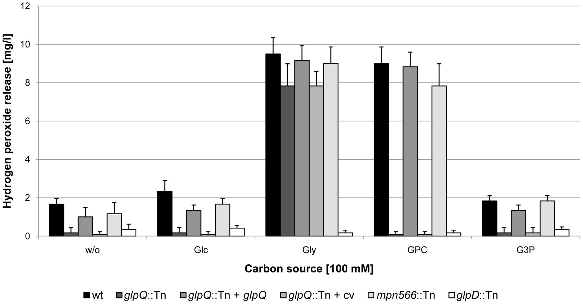 Examination of <i>M. pneumoniae</i> hydrogen peroxide release.