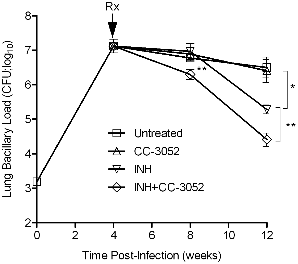 Effect of CC-3052 and INH treatment on the growth of <i>Mtb</i> in rabbit lungs.