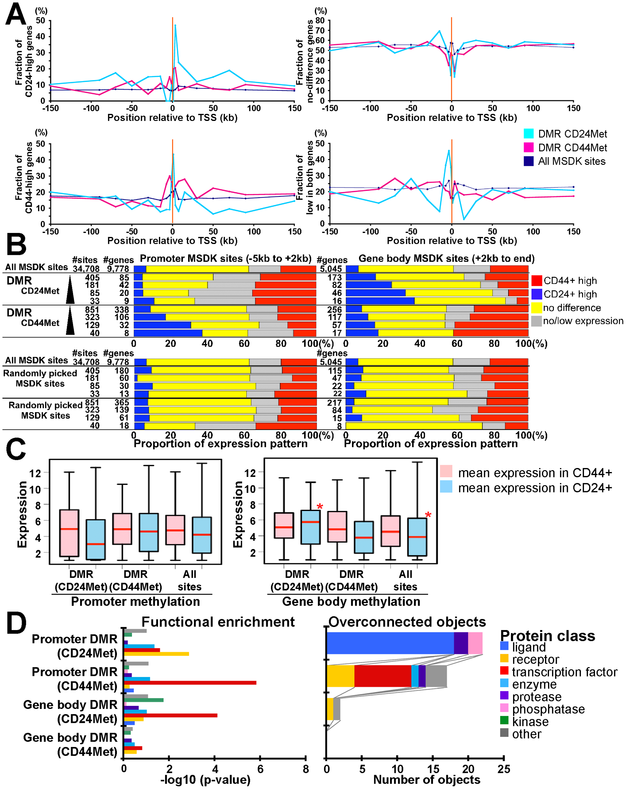 Combined view of DNA methylation and gene expression patterns.