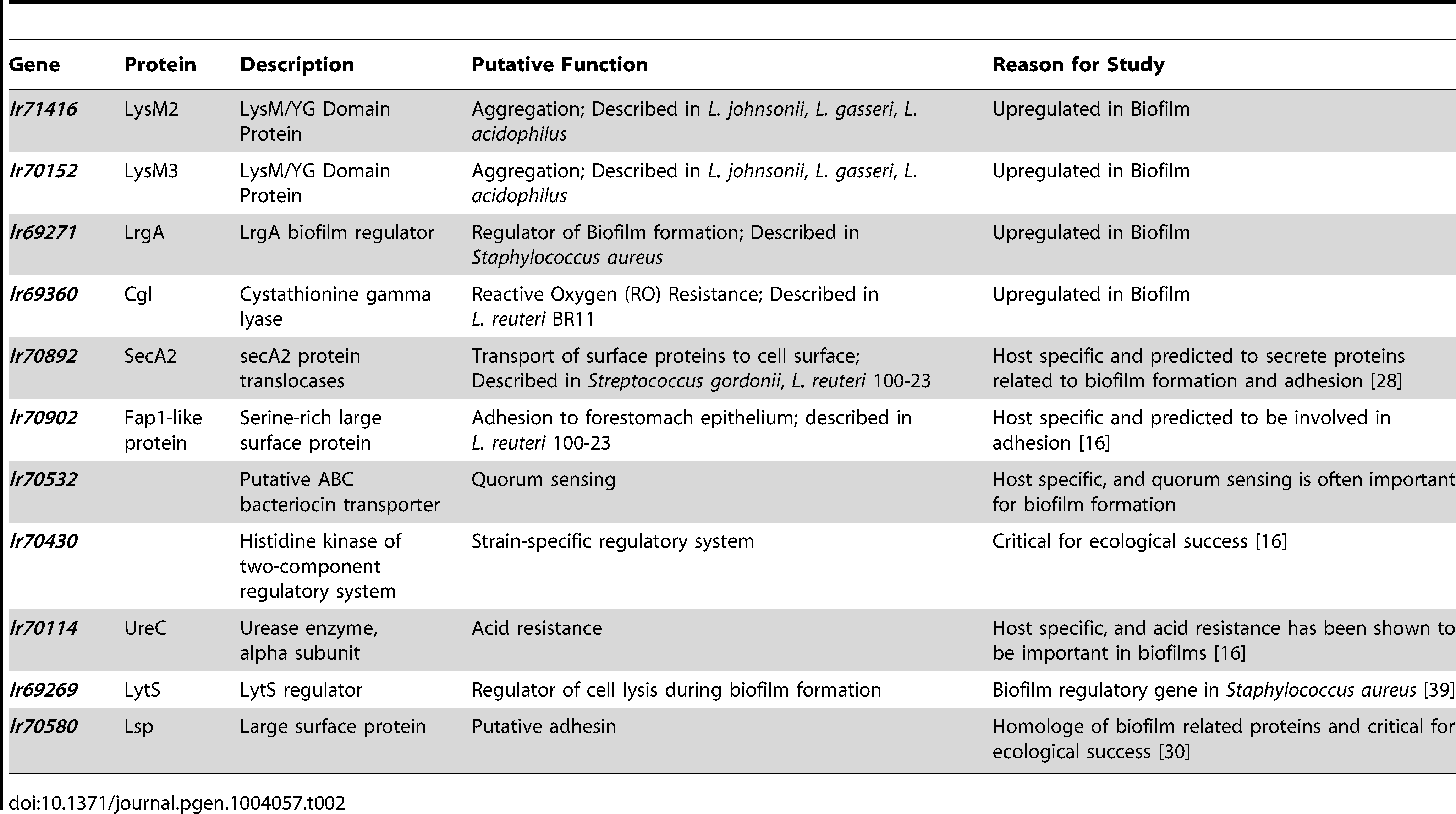 Genes of <i>L. reuteri</i> 100-23 selected for functional characterization.