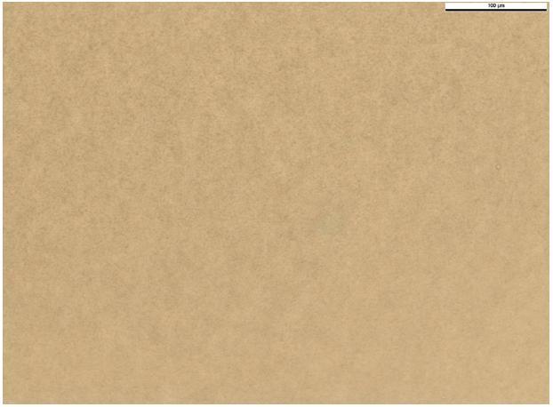 Obr. 5. EMLA krém (90. den, zvětšení 400x)