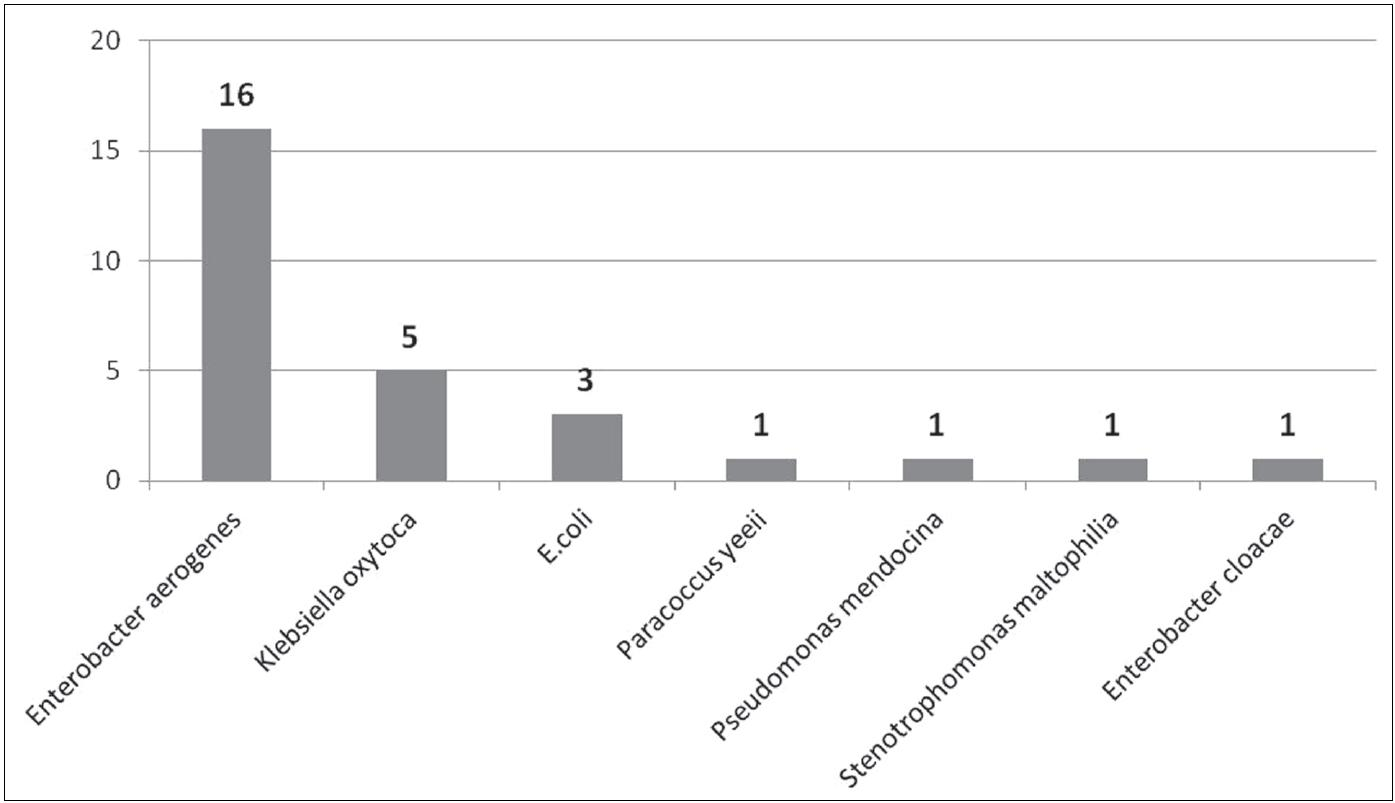 Počty izolovaných gramnegativních bakteriálních kmenů z ošetřujícího personálu