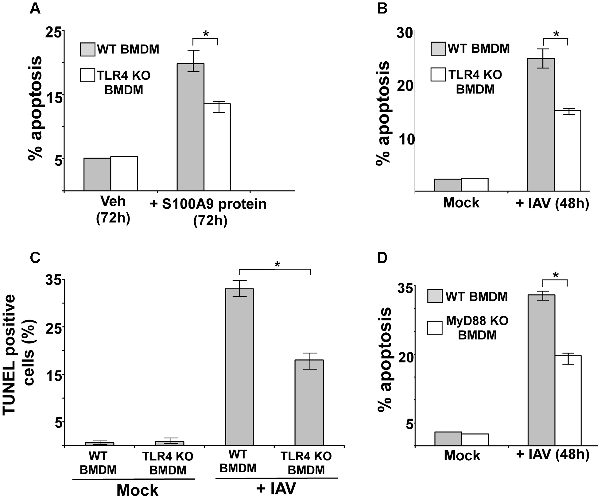 Activated TLR4/MyD88 pathway promotes S100A9-mediated apoptosis and is required for optimal apoptosis of IAV infected cells.