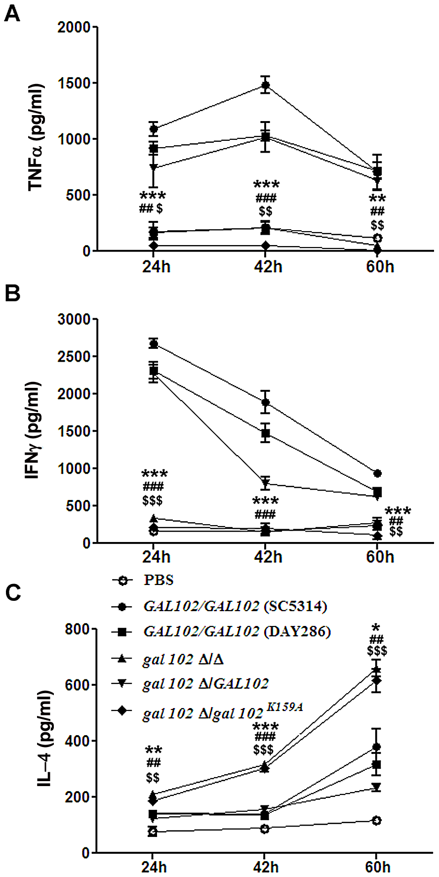 Reduced virulence is associated with the inability of <i>gal102Δ/Δ</i> to elicit pro-inflammatory cytokine response in the host.