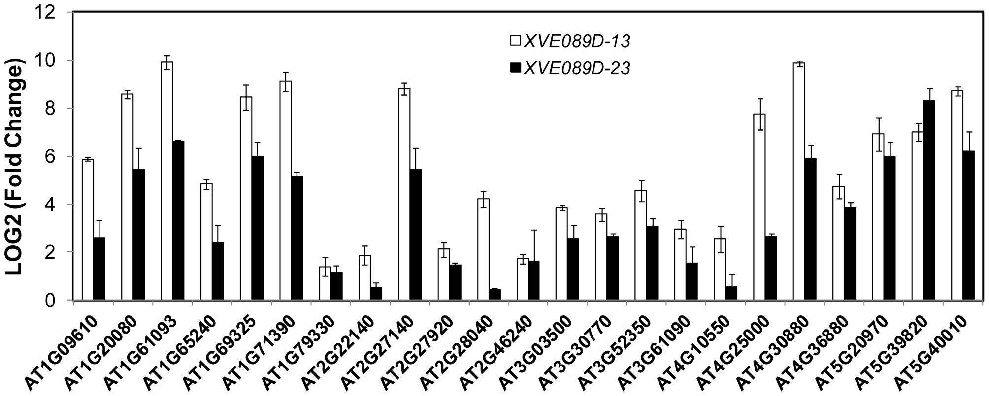 NAC089 regulates many downstream genes.