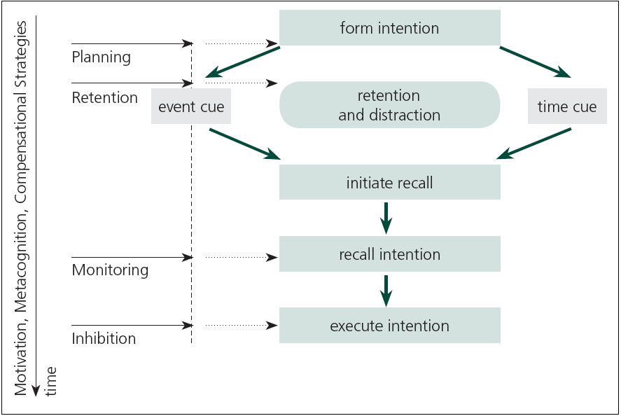Fig. 1. Process model of prospective memory.