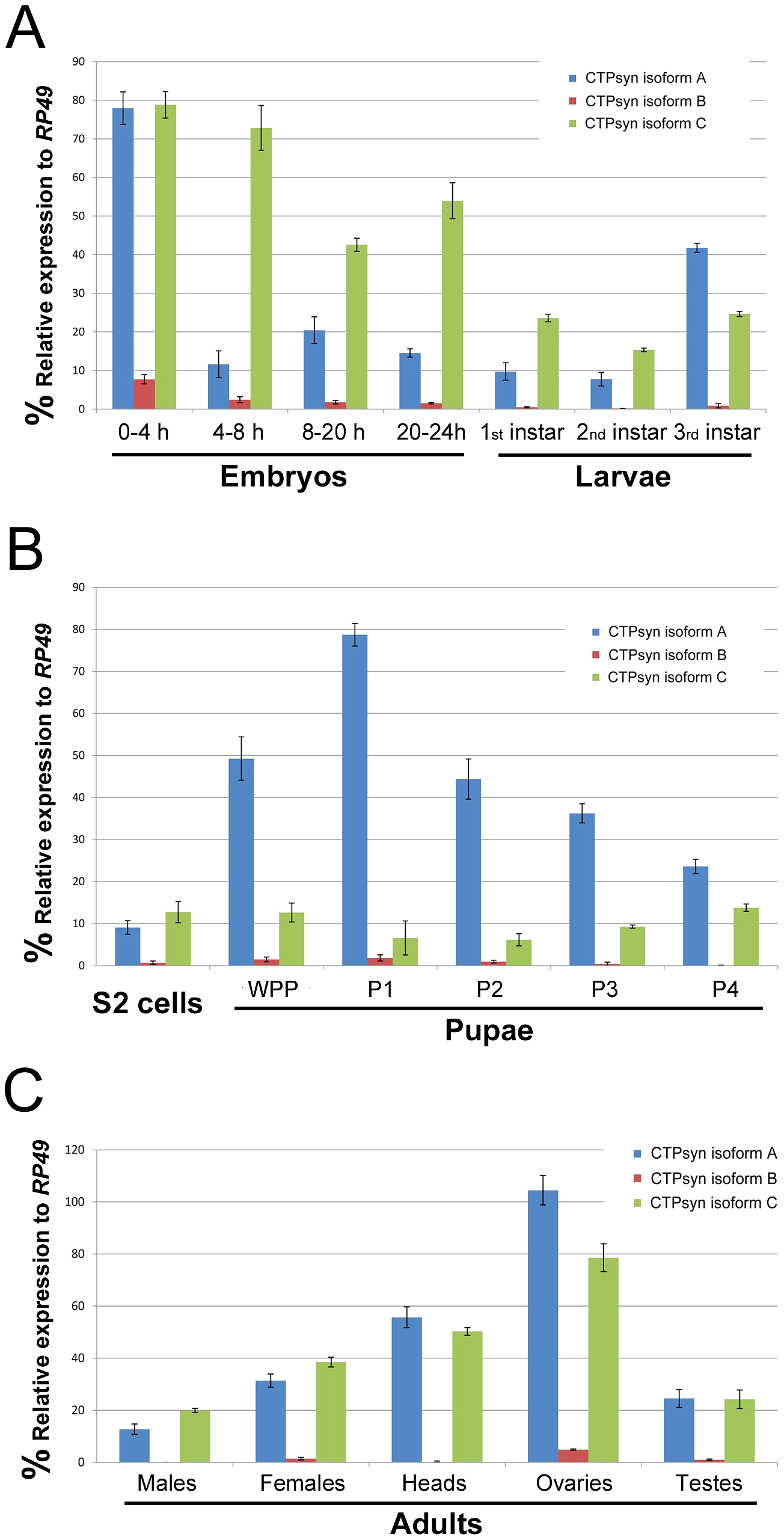 Expression profiles of <i>Drosophila</i> CTPsyn isoforms as revealed by qPCR.