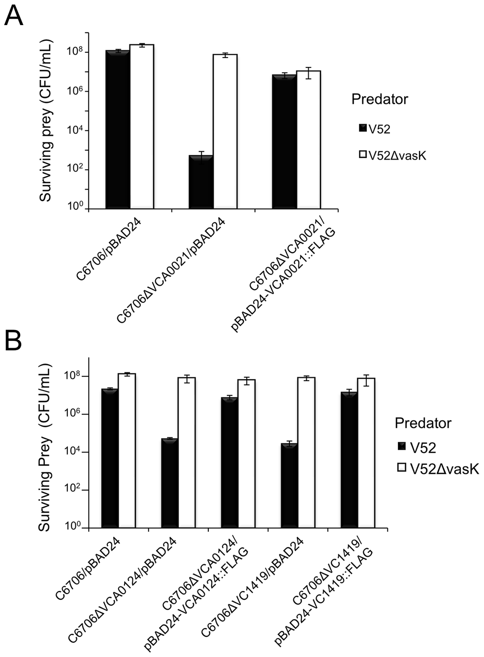 Episomal expression of VCA0021, VCA0124, and VC1419 protects respective mutants from T6SS killing.