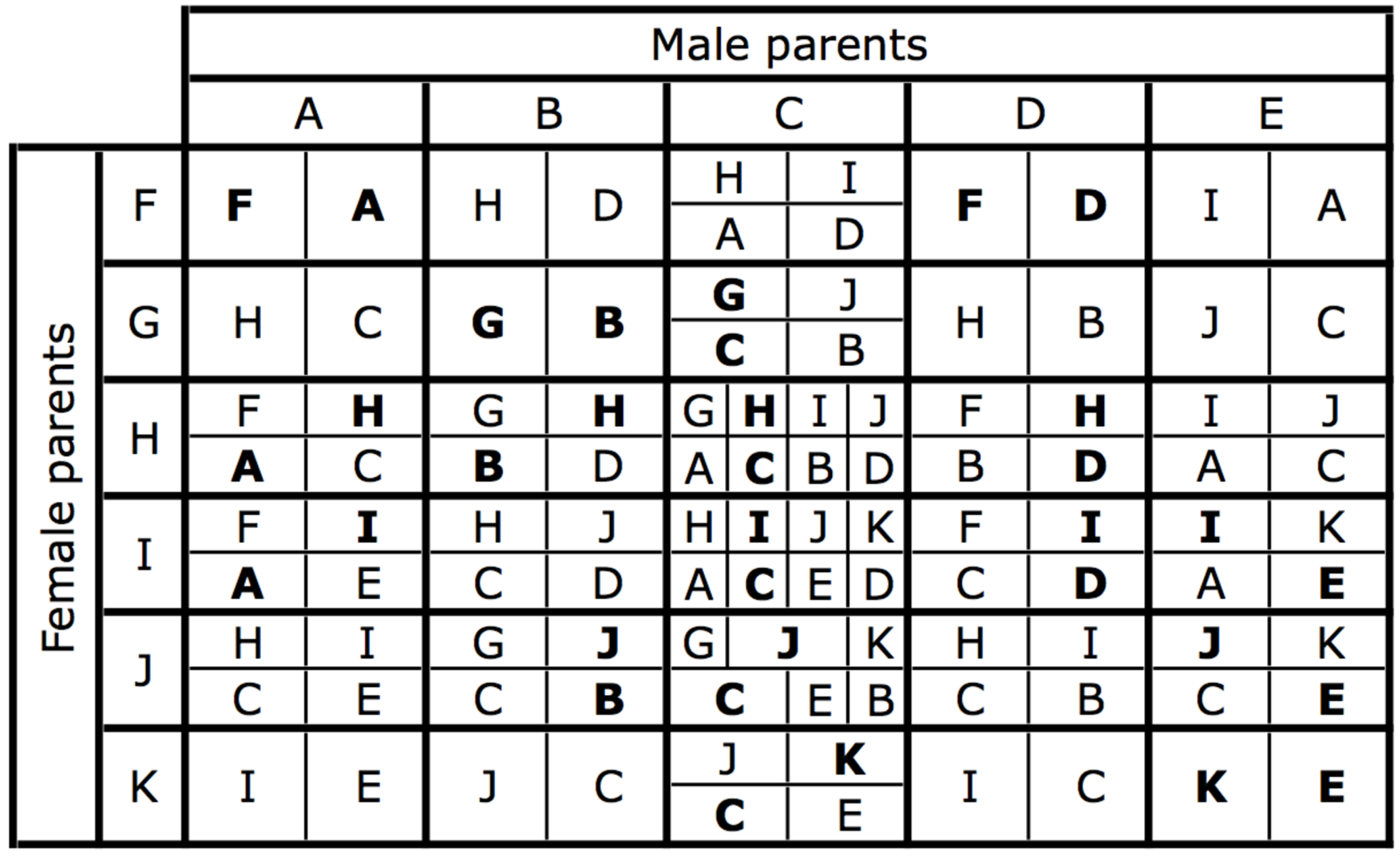 The karyotypes produced by each possible mating.
