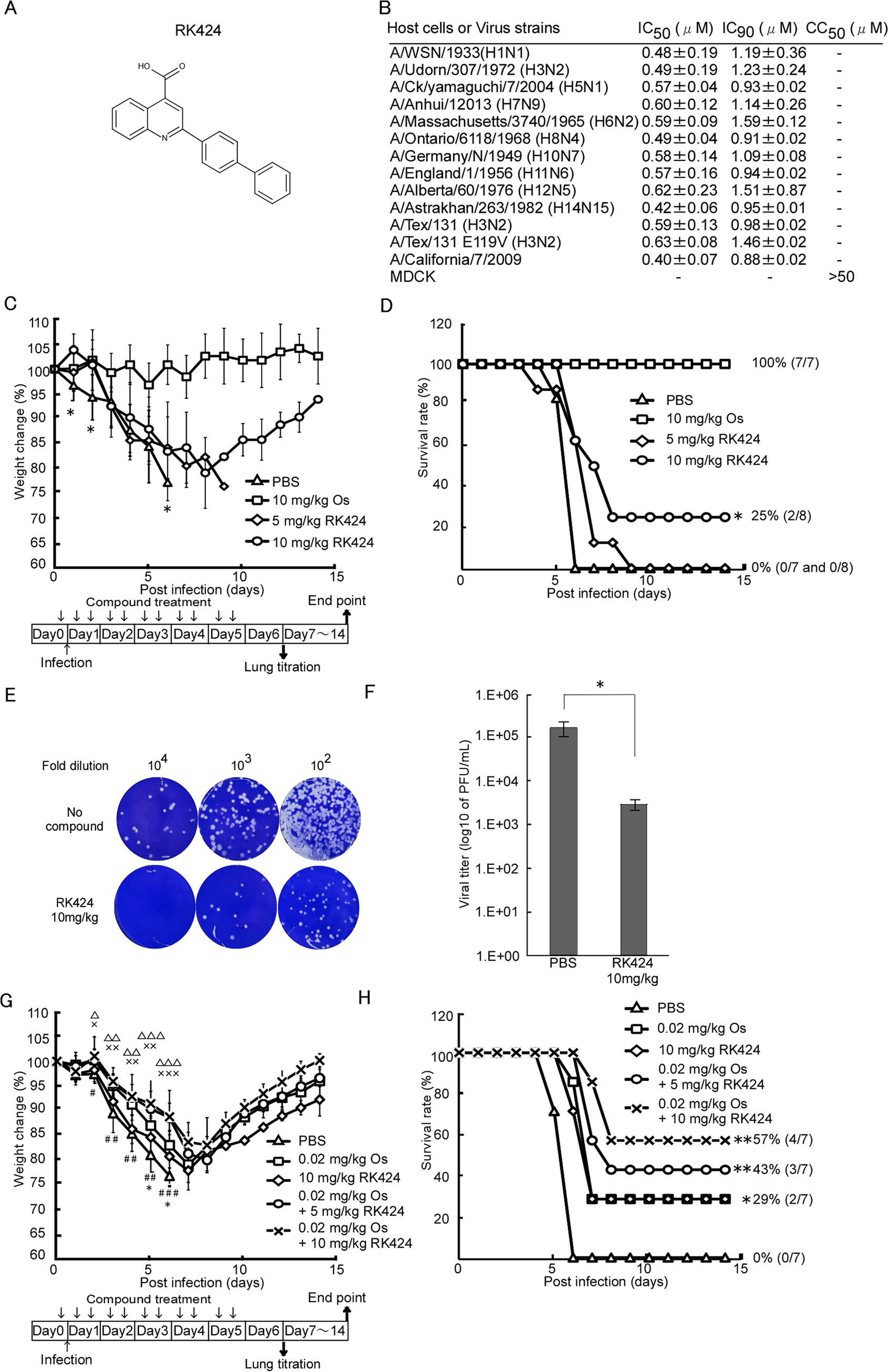 RK424 shows antiviral activity both <i>in vitro</i> and <i>in vivo</i>.